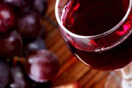 utilaje-vinificatie
