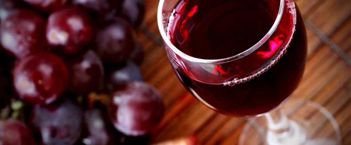 Cele mai bune utilaje vinificatie pentru o productie rapida si facila!